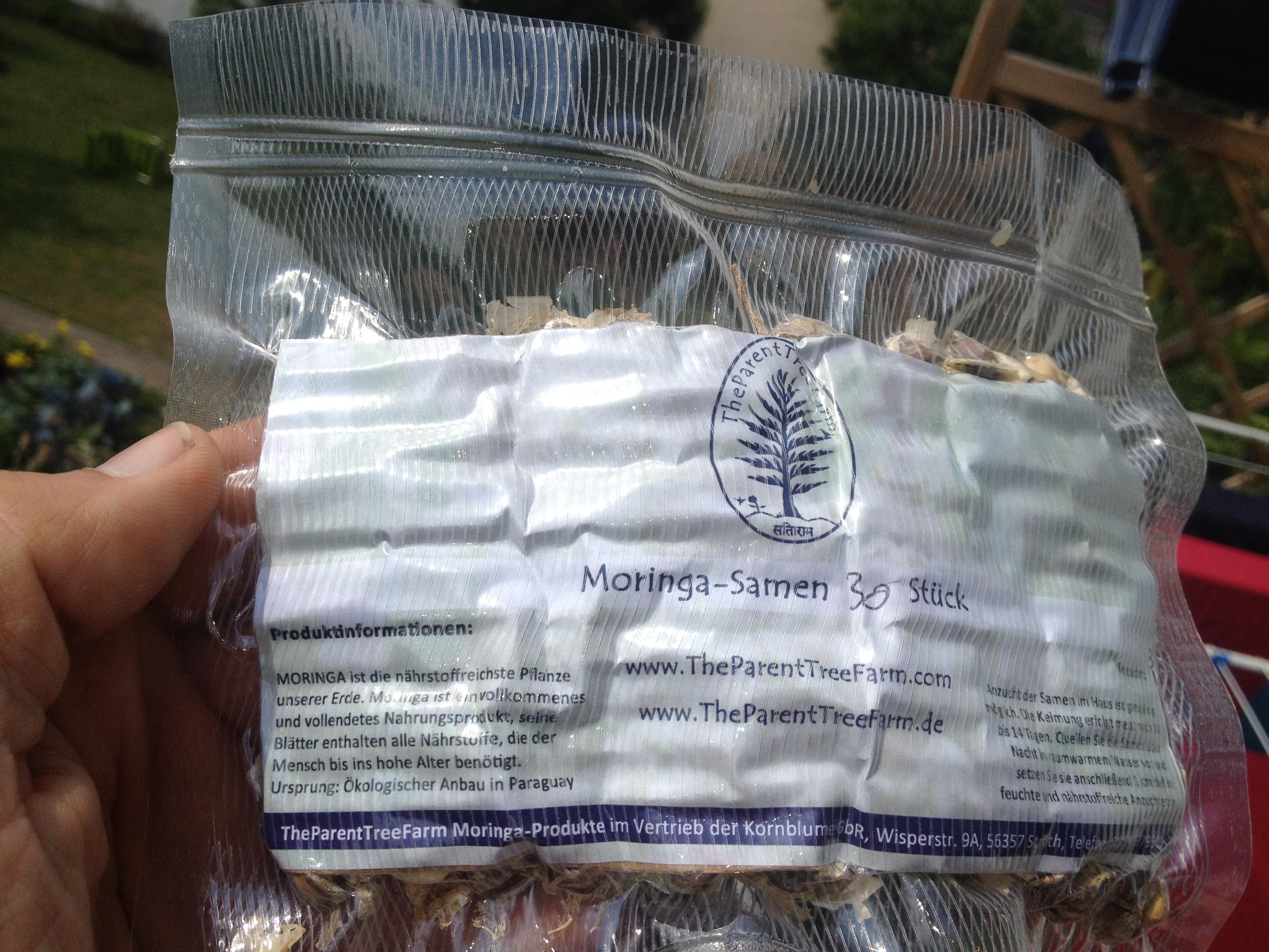 Moringa Samen 30 Stück