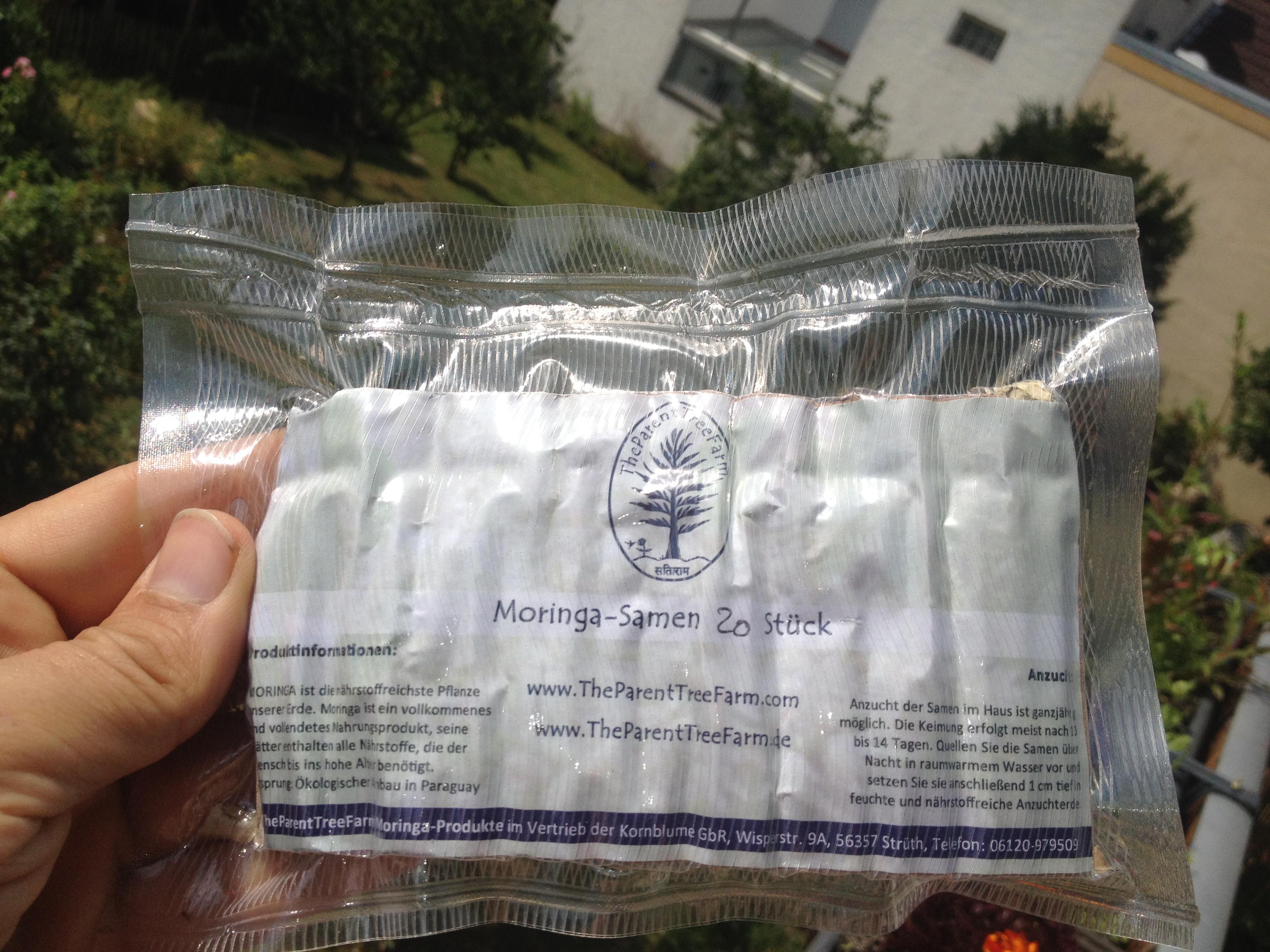 Moringa Samen 20 Stück